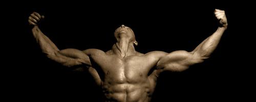 IGF Plus Muscle Growth Formula