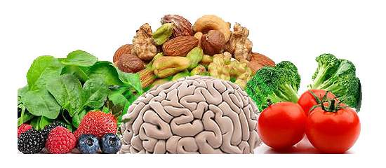 Food for Thought - 5 Basic Foods to Keep Your Brain, Memory Healthy