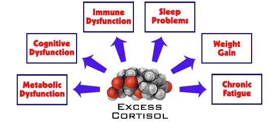 Why Should I be Concerned About my Cortisol Levels?