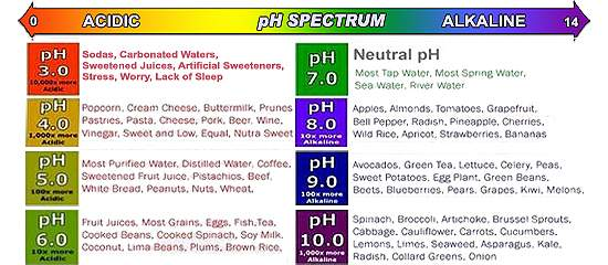 The Importance of Being Alkaline - Know Your pH !
