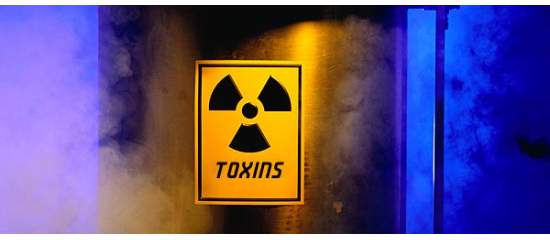 How to Protect Yourself from Environmental Toxins