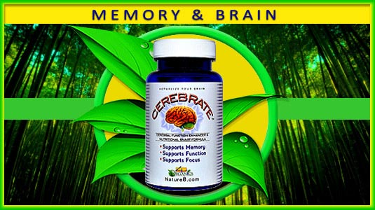CEREBRATE Memory and Brain Support