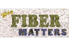 The Critical Role of Fiber in Optimal Health & Immune Function